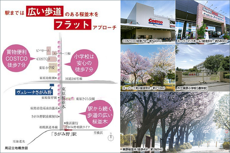 駅から現地へは、フラットな広々とした歩道の続く桜並木がアプローチ。