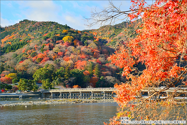 文豪、谷崎潤一郎が「陰翳礼讃」で説いたように、日本人が古来より大切にしてきた「翳りの美意識」へと昇華させた設計思想。