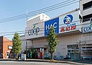 ユーコープ片倉店 約1,010m(徒歩13分)