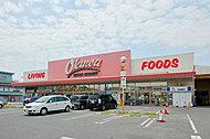 オークワ羽衣高石店 約790m(徒歩10分)