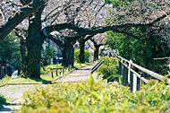 外堀公園 約1,000m(徒歩13分)