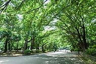 上野恩賜公園 約1,250m(徒歩16分)