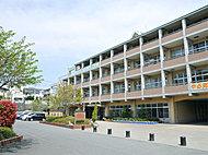 市立大谷場中学校 約480m(徒歩6分)