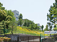 武蔵野幼稚園 約440m(徒歩6分)