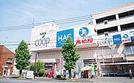 ユーコープ片倉店 約820m(徒歩11分)