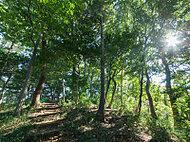 おっ越し山ふれあいの森 約670m(徒歩9分)