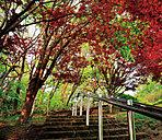 天神山緑地 約1.4km