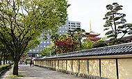 東長寺 約860m(徒歩11分)