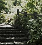 野毛山公園 約480m(徒歩6分)