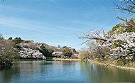 三ッ池公園 約1,040m(徒歩13分)