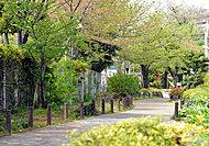 田柄川緑道 約170m(徒歩3分)