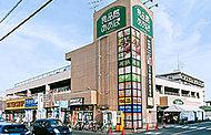 食品館あおば さがみ野店 約520m(徒歩7分)