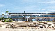 神奈川県立湘南海岸公園 約490m(徒歩7分)