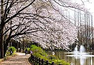 鎌ケ谷市役所 約1,030m(徒歩13分)