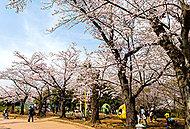 貝柄山公園 約360m(徒歩5分)