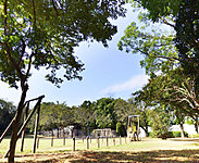 流山市総合運動公園 約2,040m(徒歩26分)