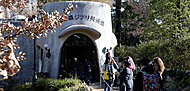 三鷹の森ジブリ美術館 約1,020m(徒歩13分)