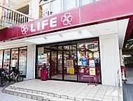 ライフ 向ヶ丘遊園店 約260m(徒歩4分)