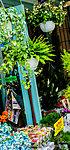 幡ヶ谷六号通り商店街(平成28年8月撮影) 約470m(徒歩6分)