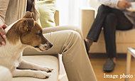 大切な家族の一員、ペットと一緒に暮らせます。※ペット飼育に関する規約等を厳守していただきます。