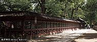 根津神社 約760m(徒歩10分)