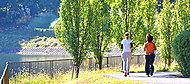 桃山公園 約664m(徒歩9分)