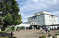 川崎市国際交流センター 現地より約560m