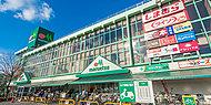 JR朝霞駅・エキア 現地より約780m