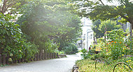 田柄川緑道 現地より約250m ※1