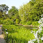 向島百花園 現地より約710m