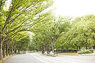 駒沢オリンピック公園 約1,650m(自転車7分)