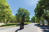 北浦和公園 約520m(徒歩7分)