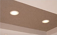 廊下など住戸内にあらかじめ設置されるダウンライトは、すべてLED照明。長寿命でエコに貢献します。
