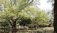 円山公園 徒歩11分/約830m