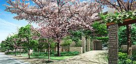 毎年待ち遠しくなる桜の季節。春の訪れは、家族が共に過ごした豊かな時間を告げる証となることでしょう。