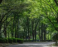 名城公園 徒歩11分/約880m
