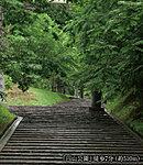 円山公園 徒歩7分/約510m