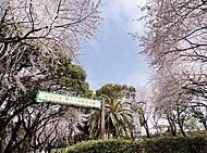 夢見ヶ崎動物公園 約550m(徒歩7分)