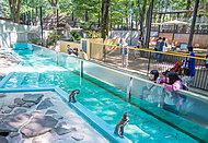 肉のハナマサ 矢向店 約900m(徒歩12分)