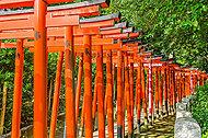 根津神社 約2,100m(徒歩27分)