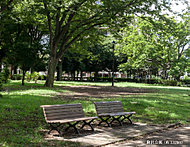 駒沢公園 約1,170m(徒歩15分)