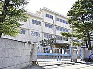 梶ヶ谷保育園 約340m(徒歩5分)