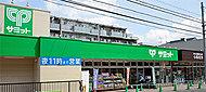 サミット弦巻通り店 約780m(徒歩10分)