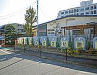 わかば幼稚園 約220m(徒歩3分)