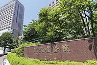 順天堂大学医学部附属順天堂医院 約870m(徒歩11分)