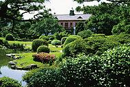 小石川植物園 約2,750m(徒歩35分)