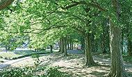 美しが丘公園 約100m(徒歩2分)