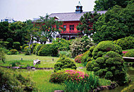 小石川植物園 約1,590m(徒歩20分)(2014年7月撮影)