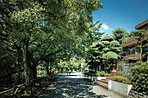 石神井公園周辺の街並み