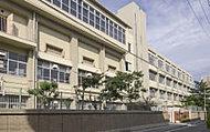 市立鷹取中学校 約780m(徒歩10分)